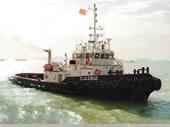 29.5m远洋拖轮